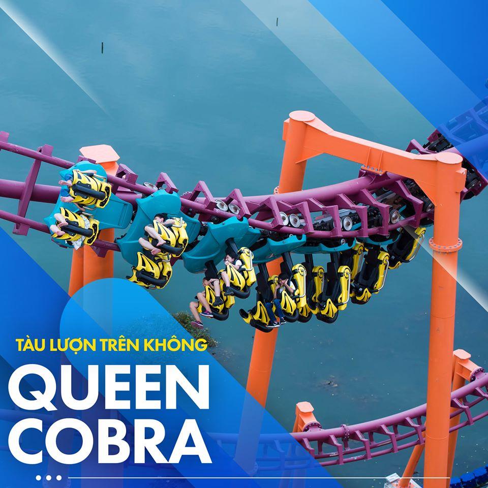 Queen Cobra – tàu lượn dạng treo dài nhất Việt Nam